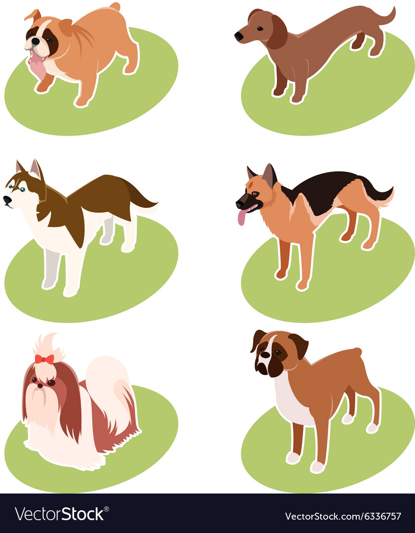 Collection of isometric dogs