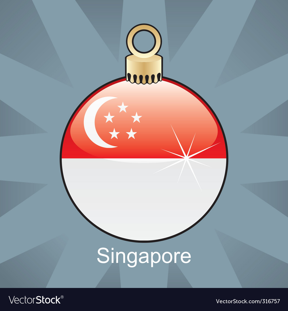 Singapore flag on bulb vector image