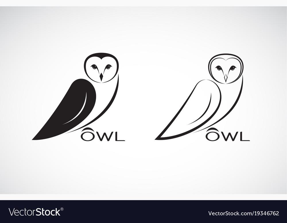 An owl design on white background bird wild