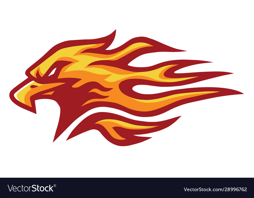 Eagle head fire flame logo mascot design