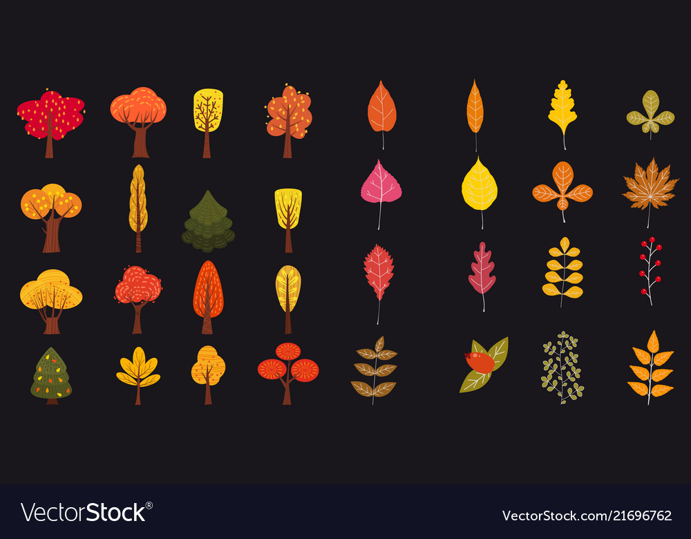 Set of cute colorful autumn leaves and berries