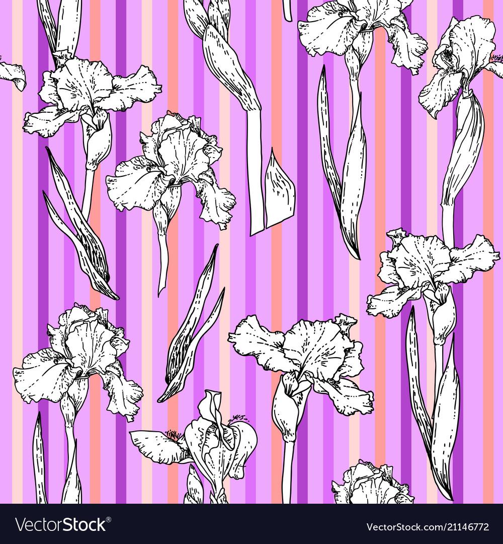Stripes violet floral