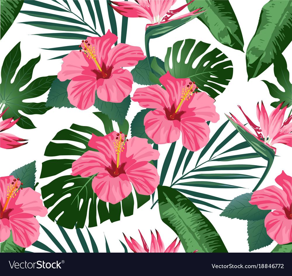 Tropical Flowers And Leaves On Background Vector Image