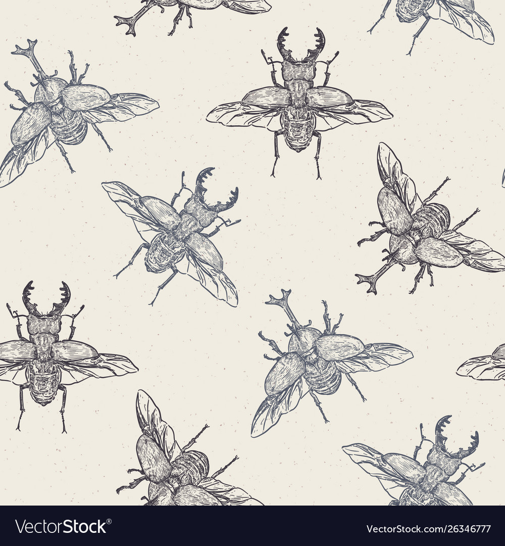 Beetles hand draw sketch seamless pattern