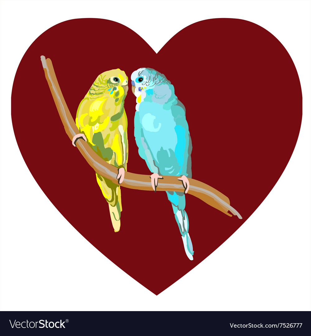 Wedding & Lovebirds Vector Images (49)