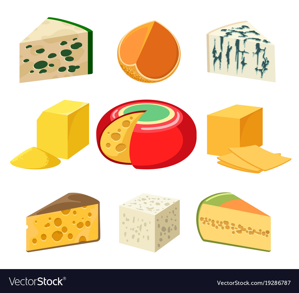 Cheese types and slices