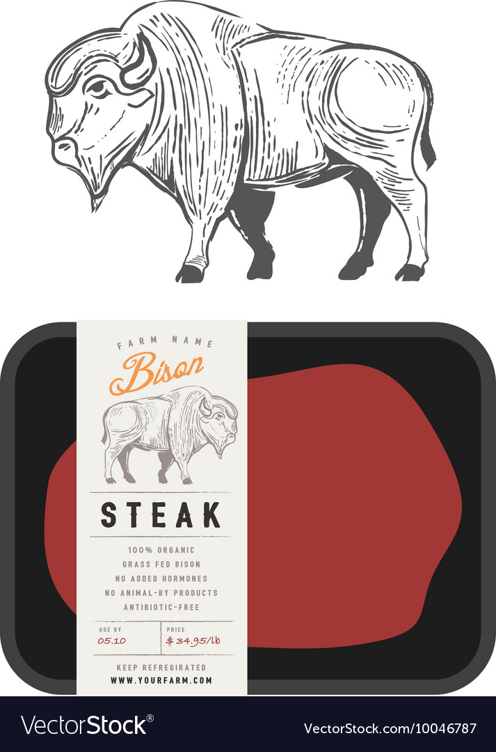 Vintage bison buffalo engraving style