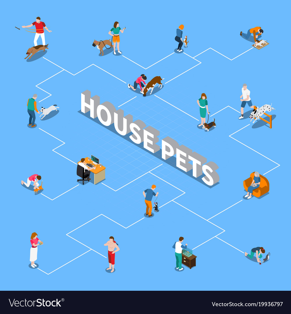 People with pets flowchart