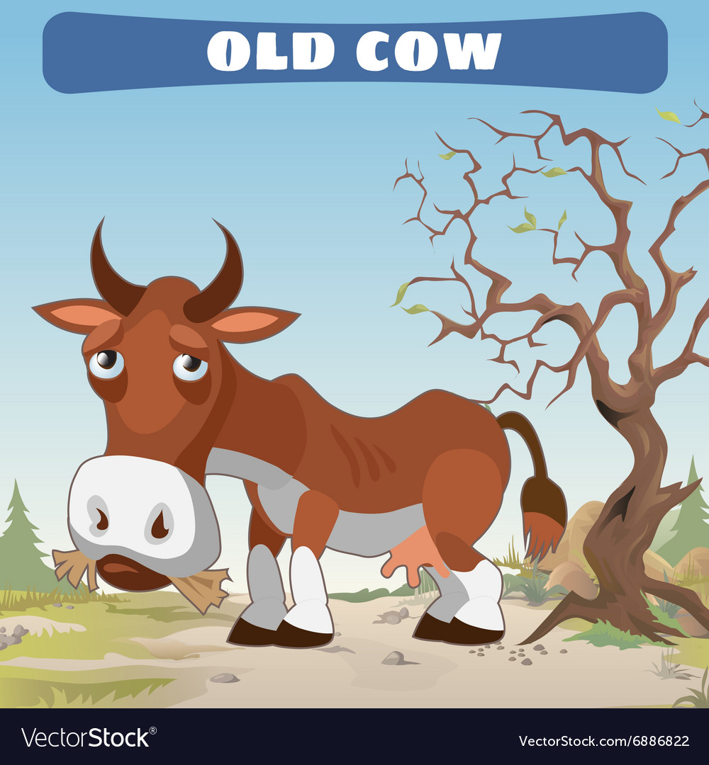 Old cow in wasteland character from wild West vector image