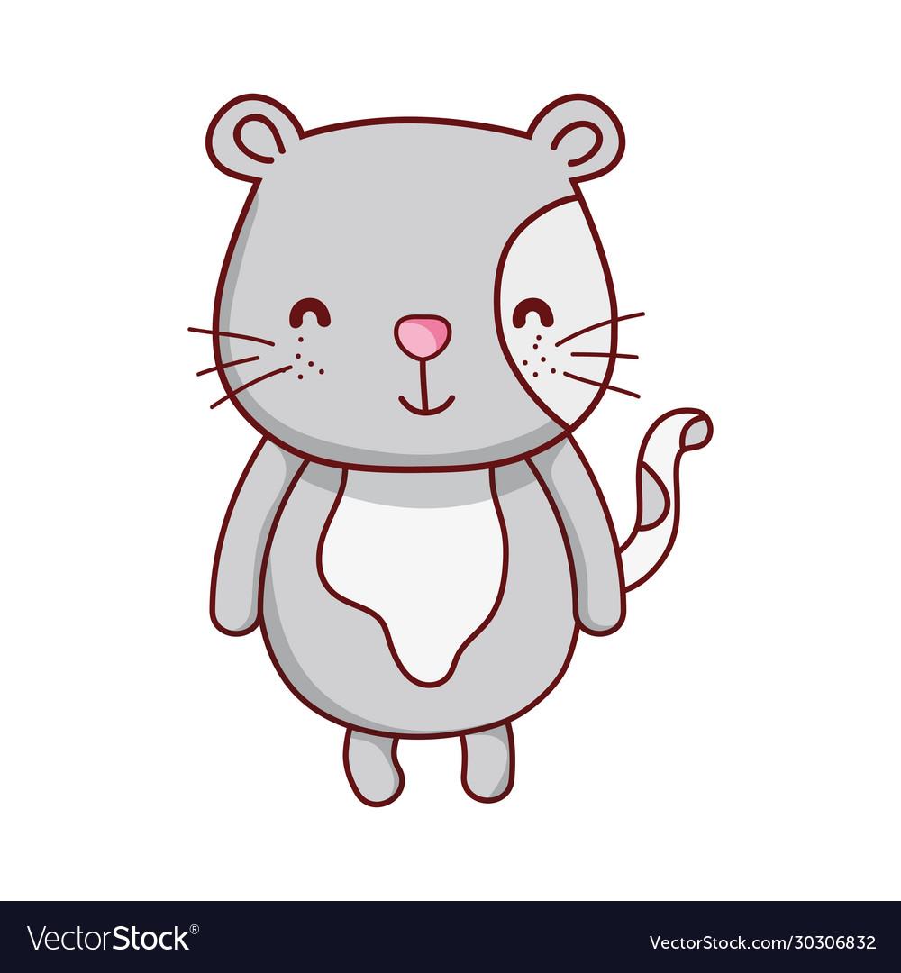 Cute gray cat animal cartoon isolated icon design