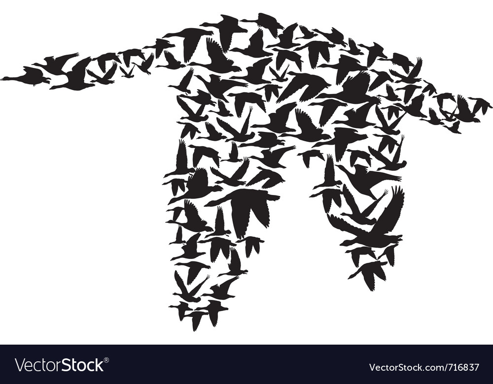 Goose made up of small birds vector image