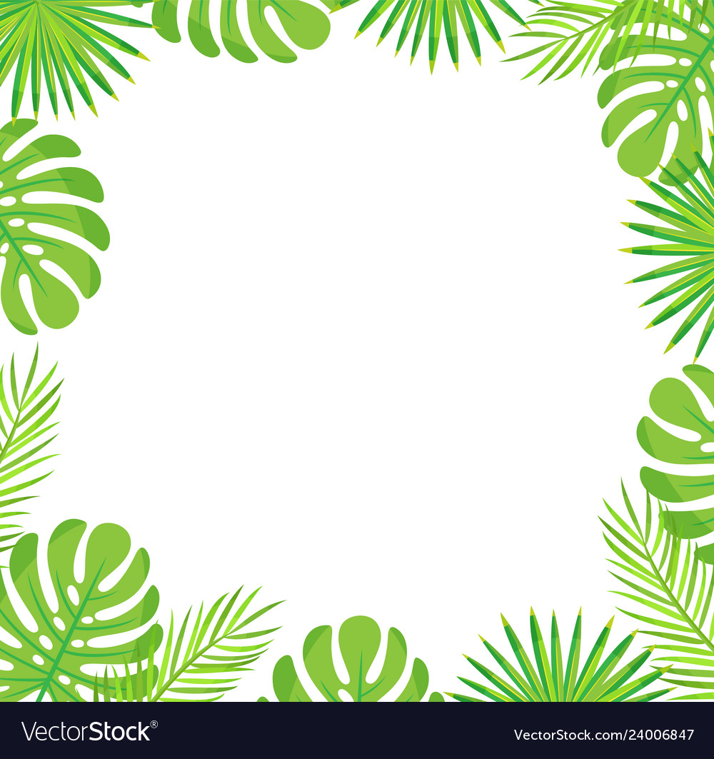 Tropical Leaves Border Isolated Green Palm Leaves Vector Image Small hawaiian flowers clip art. vectorstock