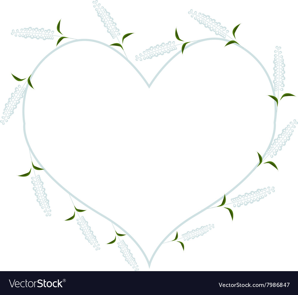 White Sage Flowers In A Heart Shape Royalty Free Vector