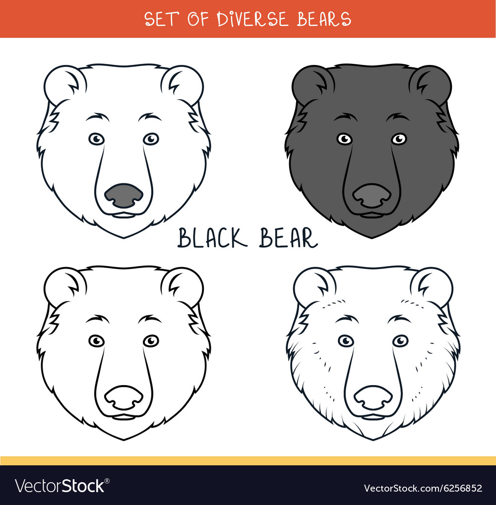 Black bear Set isolated face heads bear in color