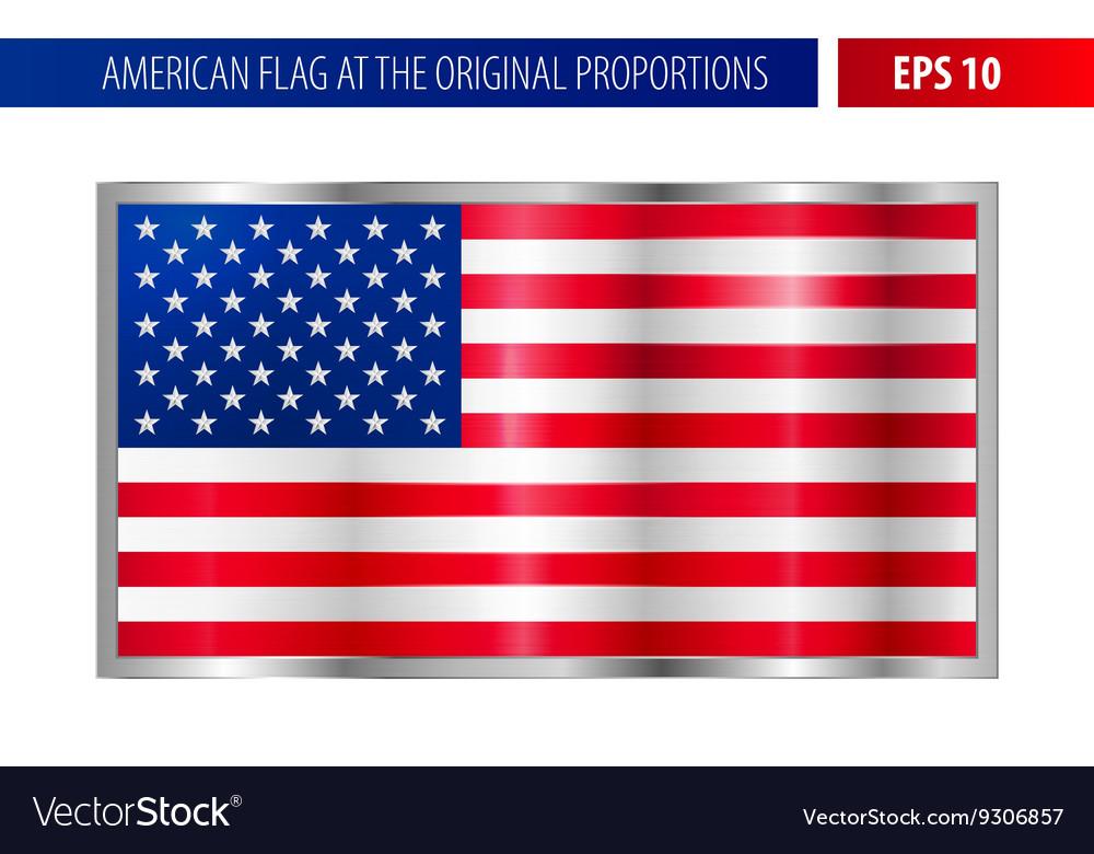 American flag in a metallic silver frame Vector Image