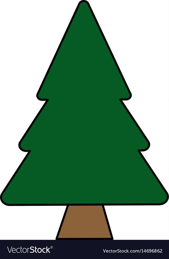Colorful Image Cartoon Pine Tree Royalty Free Vector Image