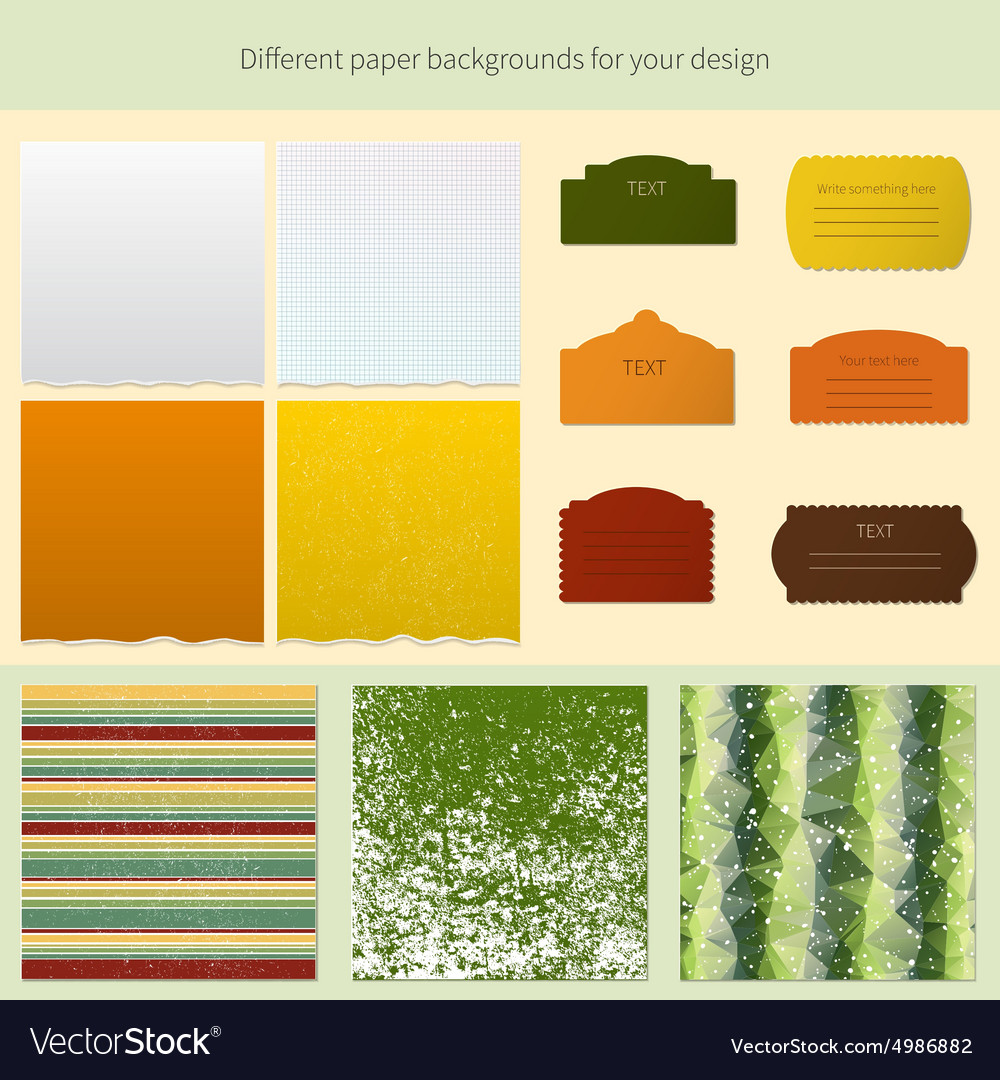 Business document template vector image