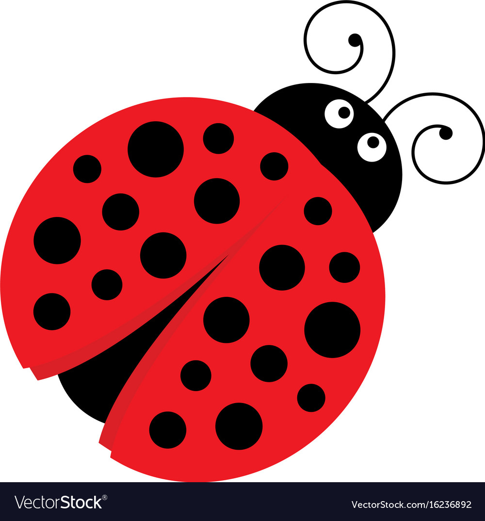 A Cartoon Ladybug cute cartoon ladybug