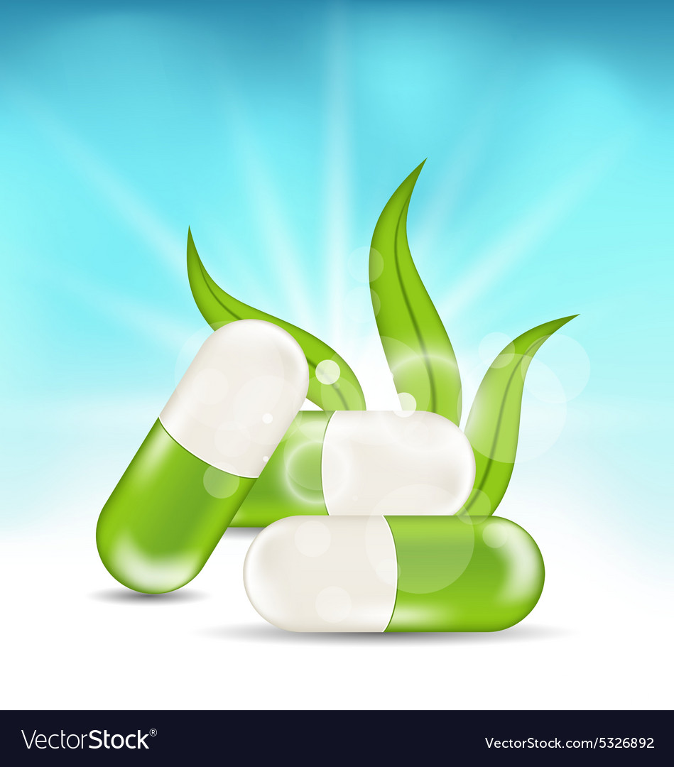 Pills and Green Leaves vector image