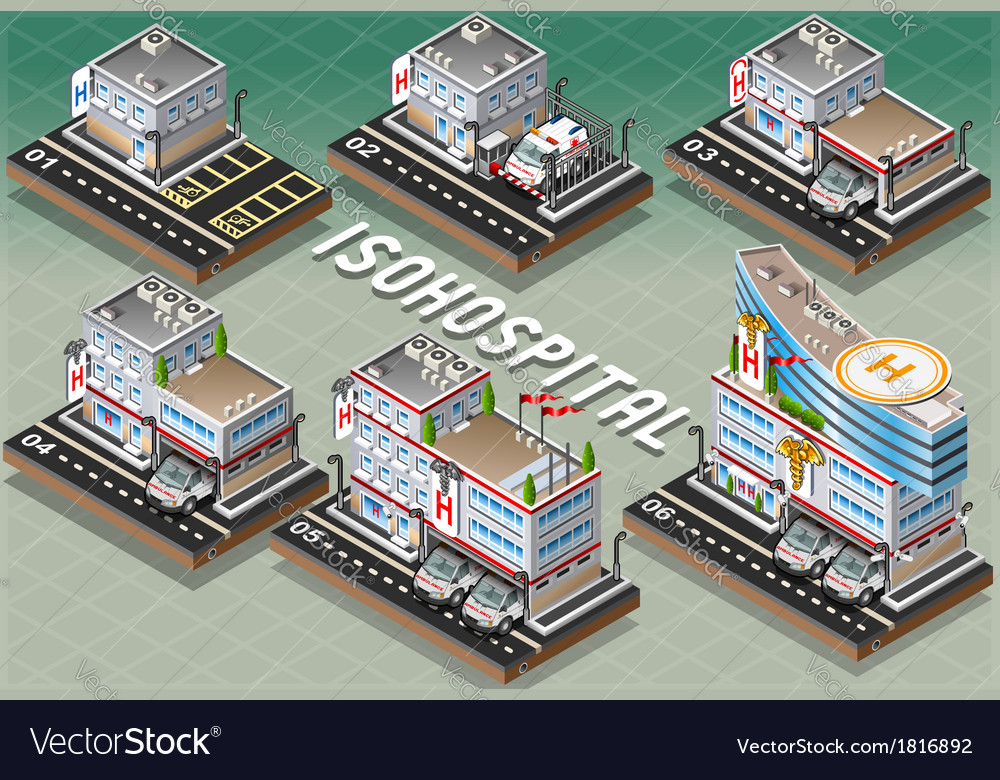 Set of Isometric Hospitals vector image