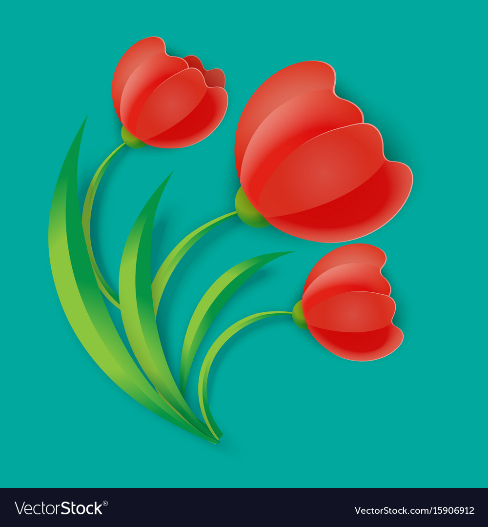 Background three red tulip flowers with green