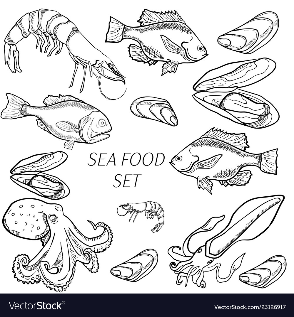 Set sea food products vector