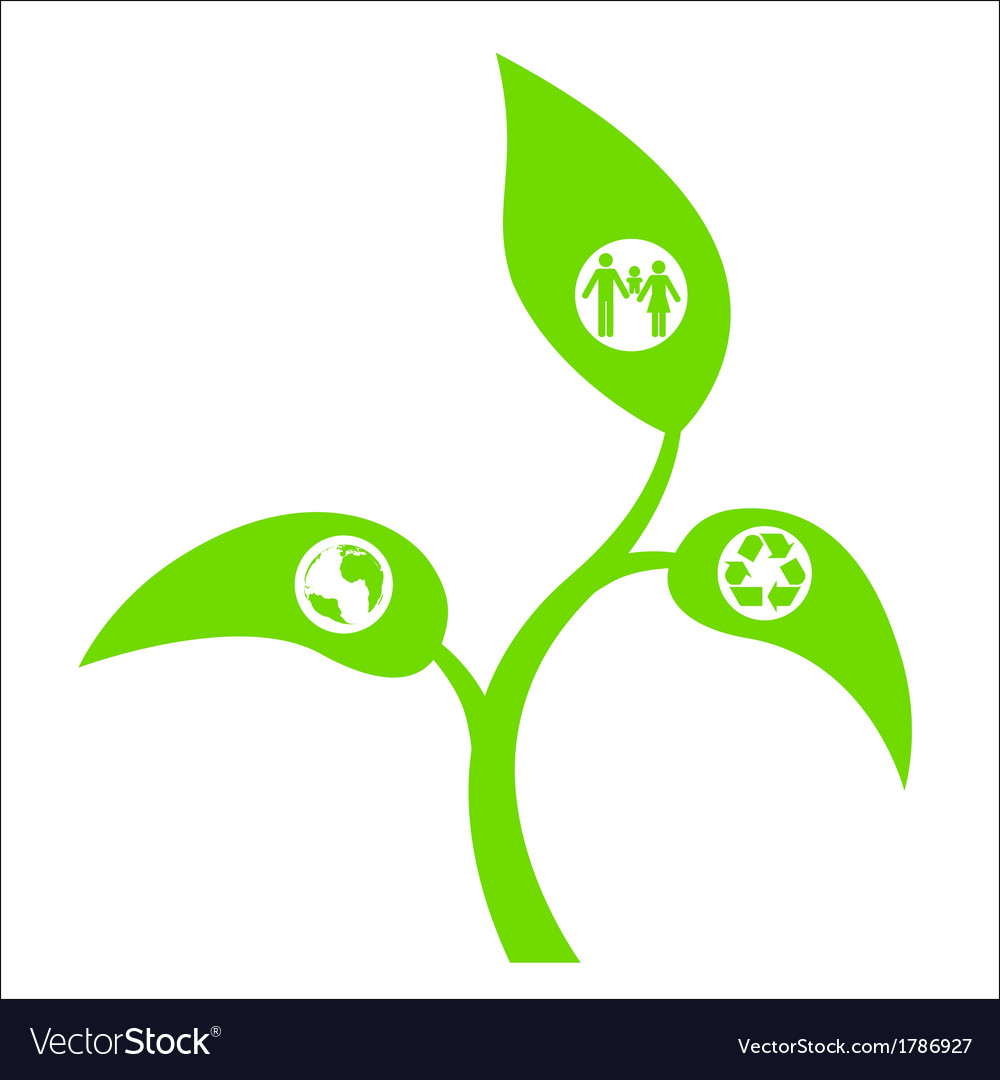 Eco sprout vector image
