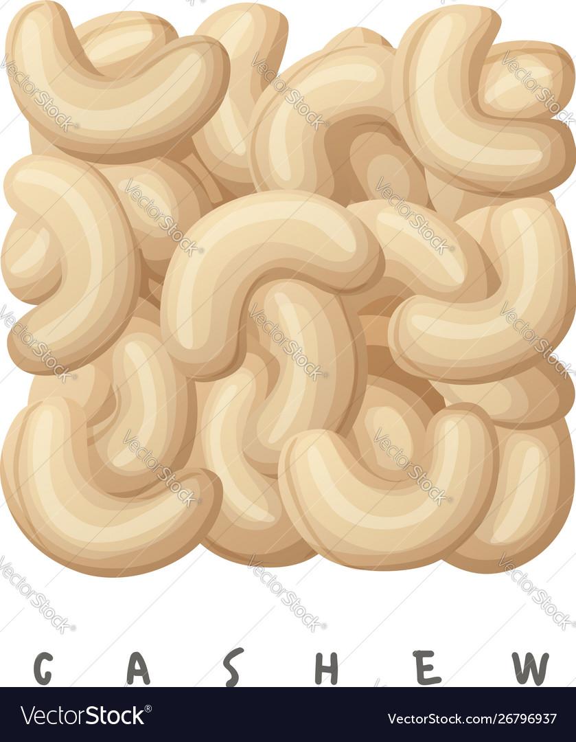 Cashew nuts square icon cartoon