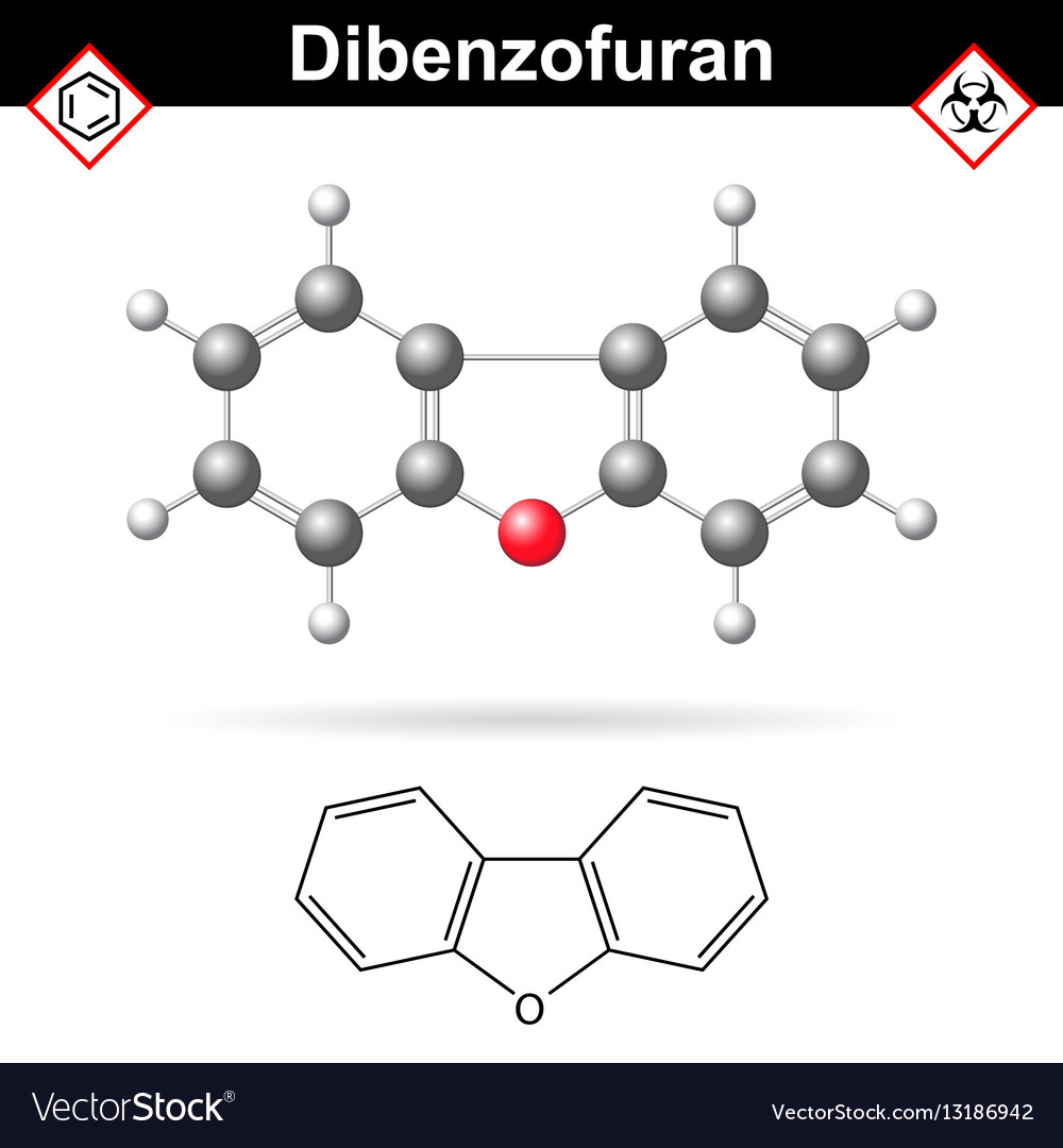 Dibenzofuran aromatic chemical compound vector image