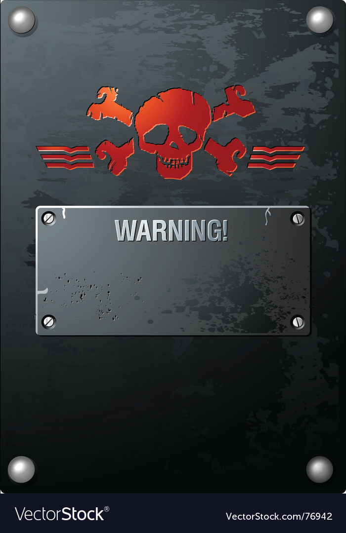 Skull on grungy metal vector image