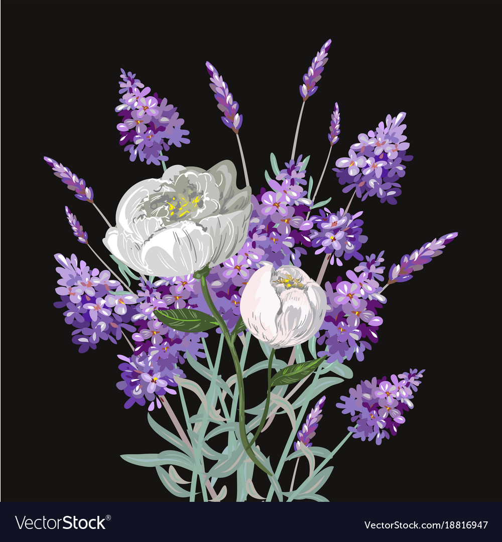 Bouquet Lavender And Peony Template On Royalty Free Vector