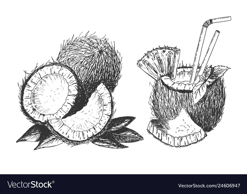 Tropical coconut cut set with cocktail drink
