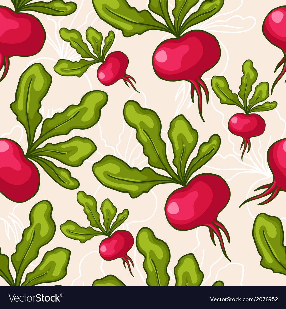 Seamless hand drawn radish background