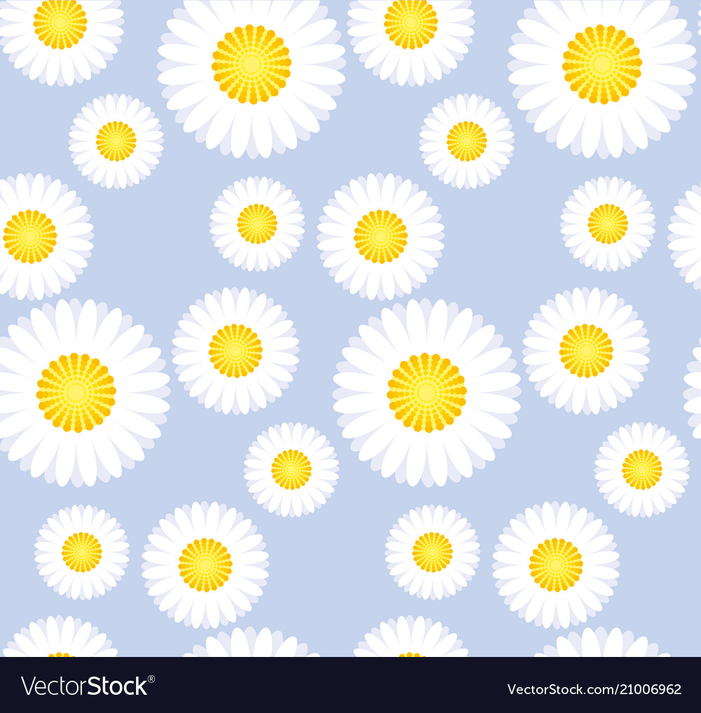 Daisy flower seamless pattern for background