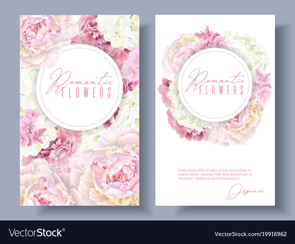 Peony pink banners vector image