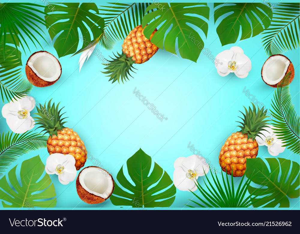 Summer tropical background with exotic palm