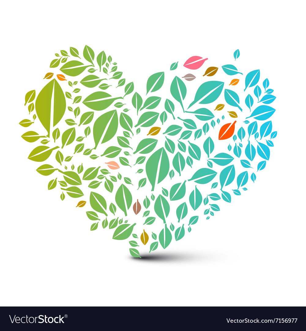 Heart Shaped Leaves - Abstract Nature Ecology