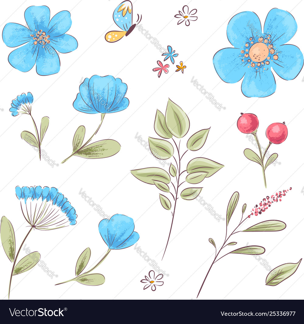 Set wildflowers and butterflies hand drawing