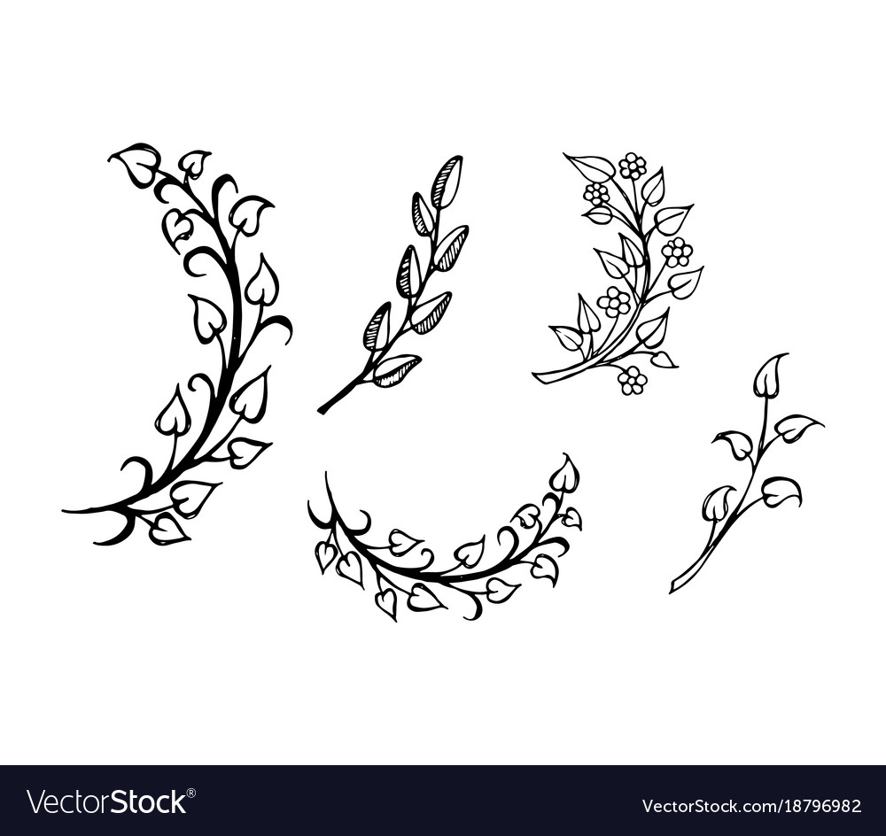 Set hand drawn branches leaves in heart shape