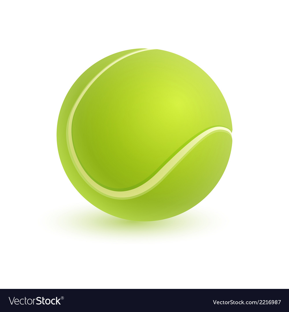 Tennis ball isolated on white vector image