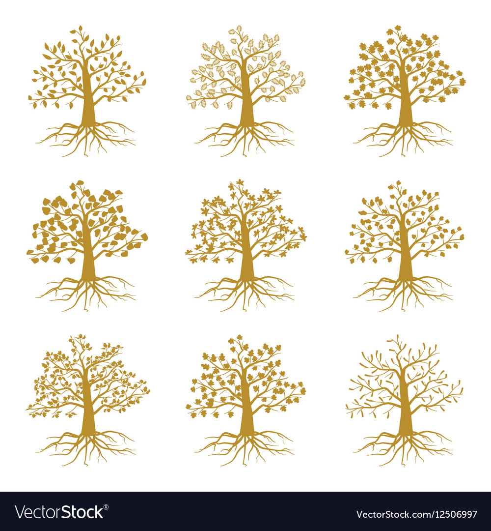 Golden decorative trees like olive and oak ash
