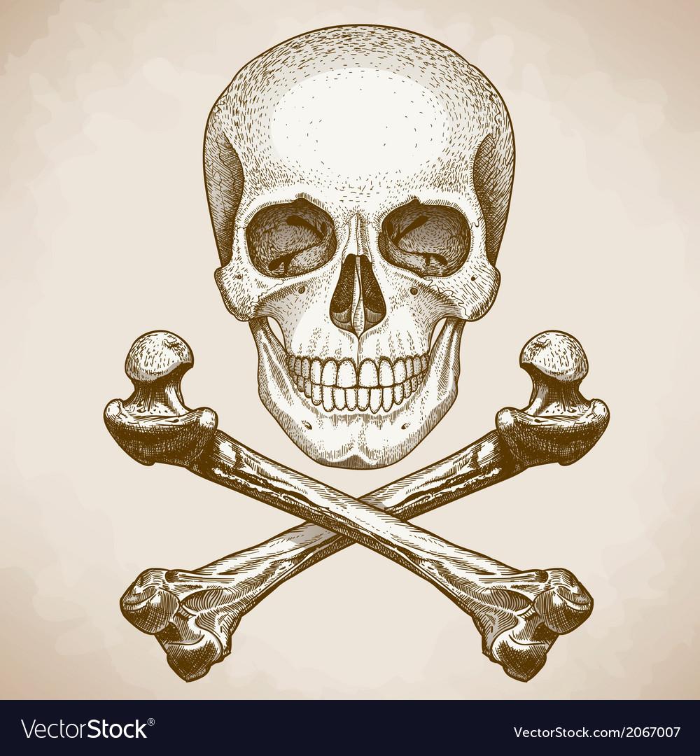 Engraving Skull And Bones Retro Style Royalty Free Vector