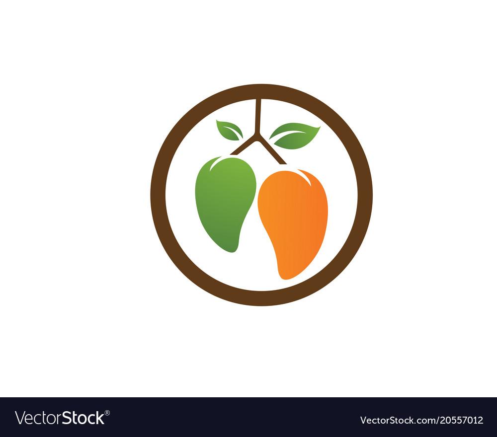 Mango Logo Icon Template Vector Image