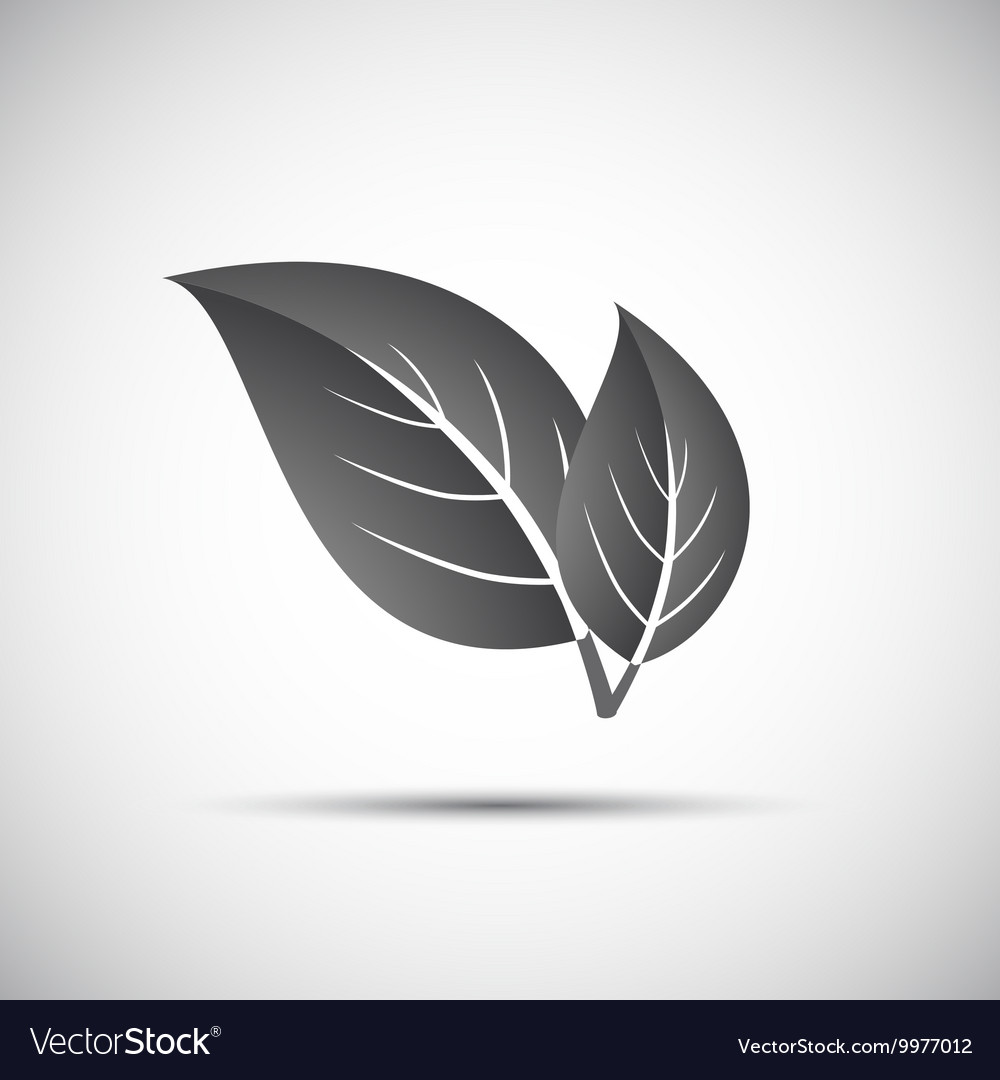Simple grey of leaves vector image