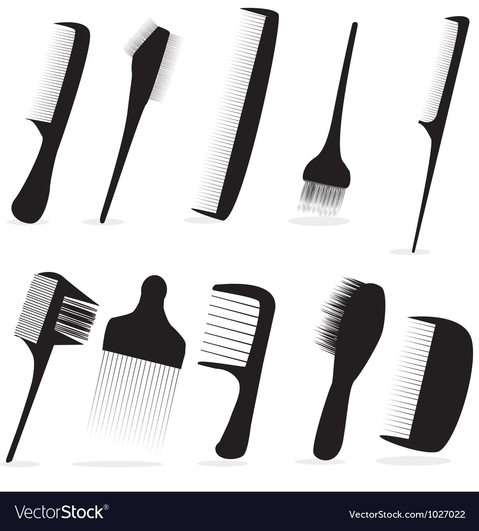 Combs vector image