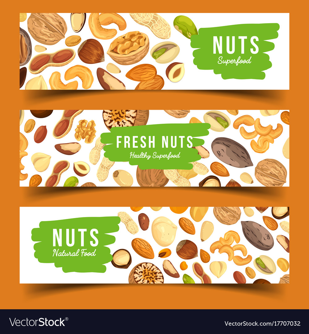 Cards with nuts food pecan and nutmeg hazel vector image