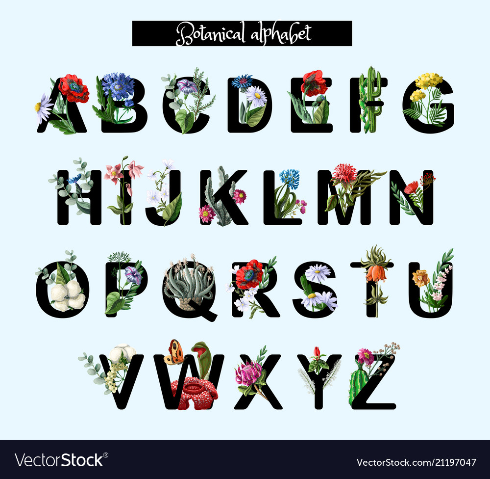 Botanical alphabet with wild and tropical flowers