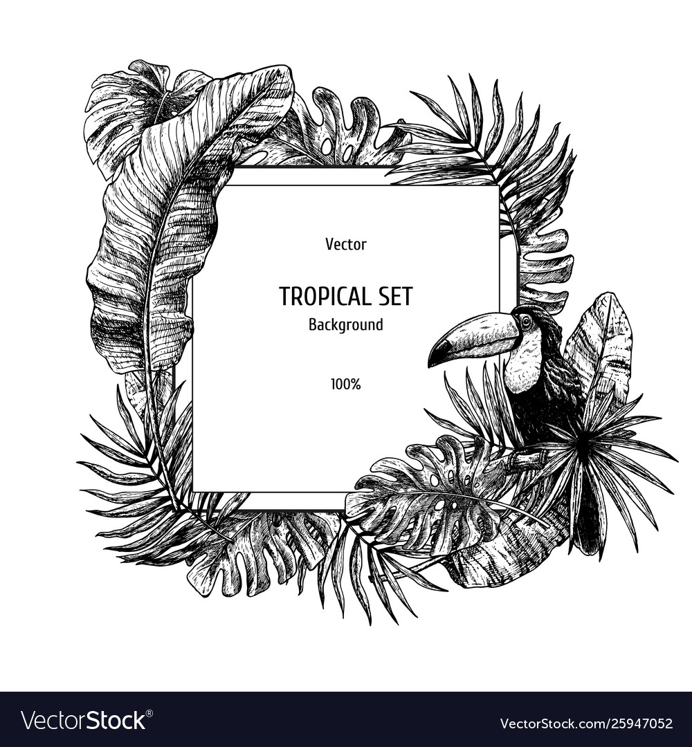 Drawing background with tropical leaves and bird