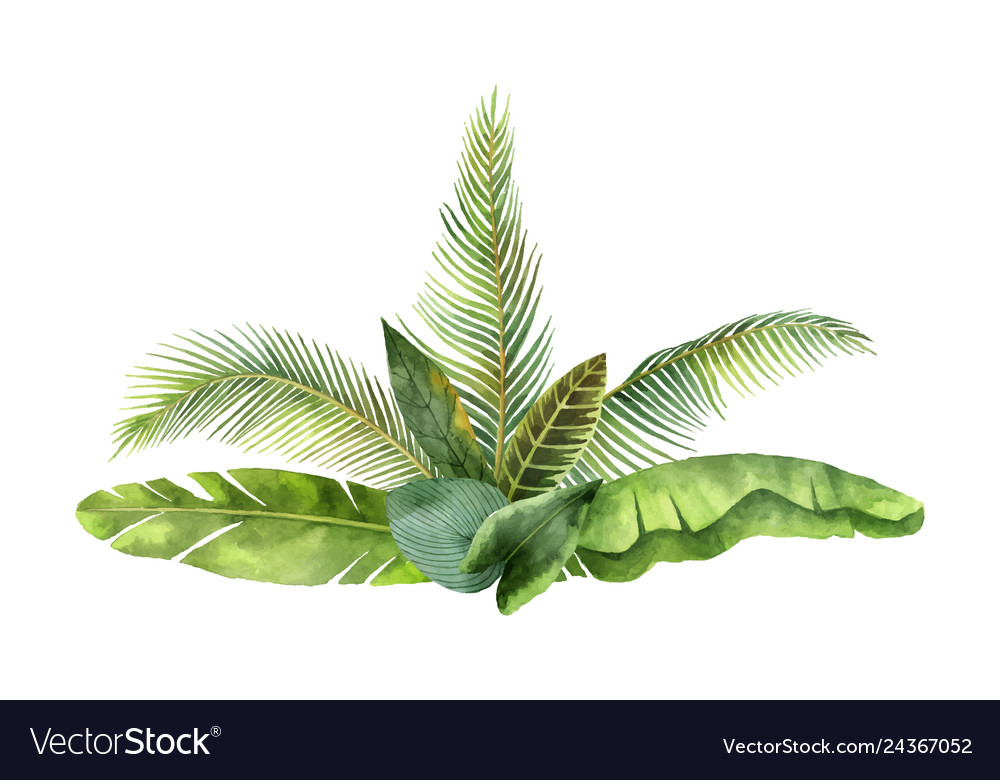 Watercolor bouquet tropical leaves and