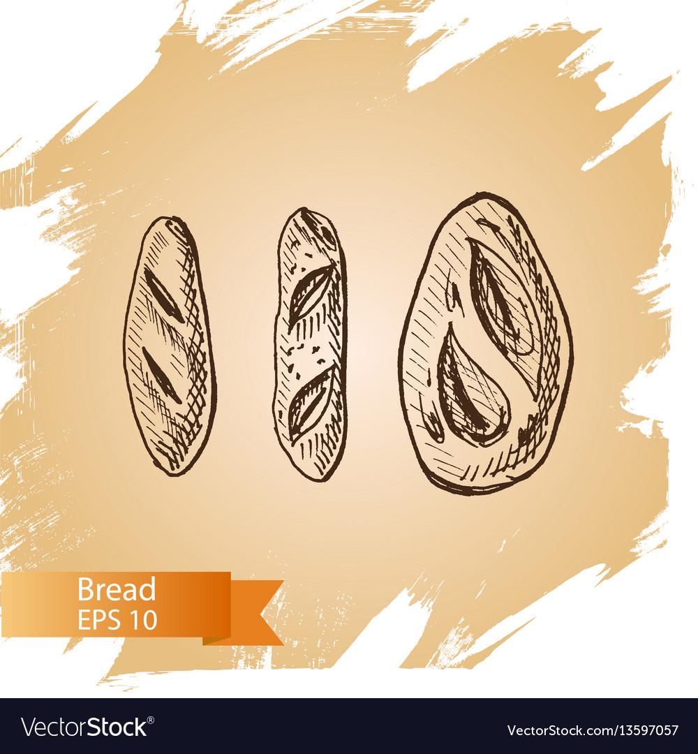 Sketch - bakery bread loaf